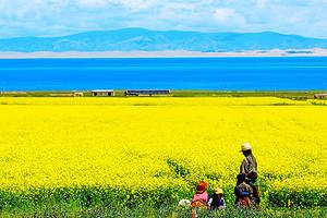 青海湖、塔尔寺三日游