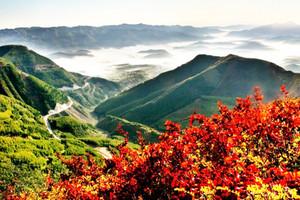 银川出发到甘肃平凉崆峒山、六盘山森林公园周末汽车二日游