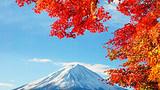 银川到日本东京、富士山、大阪、名古屋全景双飞7日游