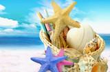 银川春节到简爱巴厘岛4晚6天游