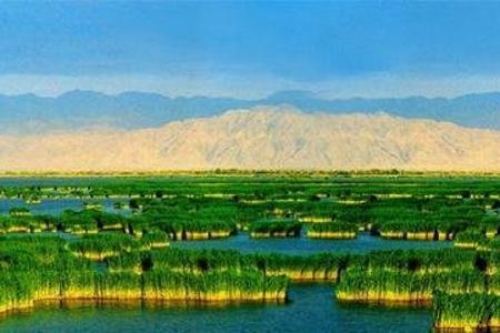 银川到沙湖、中卫沙坡头、贺兰山岩画、中华回乡文化园汽车3日游