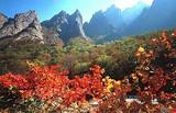 银川出发到朝鲜全景5日游