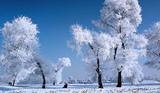 过年银川去哈尔滨、亚布力、童话雪乡、威虎寨民俗体验村6日游