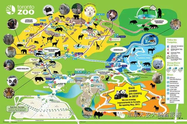 园内拥有五千多种动物,生活在多个设计独特的展馆里,其中包括获奖作品 -- 面积达30 英亩的非洲园 (African Savannah) 。值得一提的是,动物园内的大猩猩雨林馆是北美最大的室内猩猩展馆。查莱氏探索乐园 (Zellers Discovery Zone) 是游客必到之处,也是孩子们的天堂。乐园里有体验互动乐趣的儿童动物园 (Kids Zoo) ,享受戏水乐趣的水上乐园 (Splash Island) 和观看动物表演的水榭剧场 (Waterside Theatre) ,如果提前预约,动物园还可提