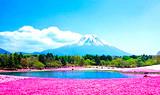 银川到日本本州全景温泉品质6日游