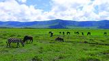 银川出发到肯尼亚+坦桑尼亚两国13日游