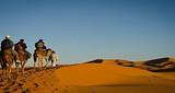 银川出发探索神秘摩洛哥摄影10日游