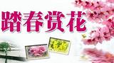 清明节银川去茹河瀑布/彭阳梯田/隆德老巷子休闲2日游