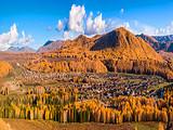 厦门到新疆旅游【10月风情南疆】新疆风情中端四飞8日游