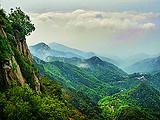 山东旅游【10月樱有尽有】大连,蓬莱,威海,青岛,泰山六日