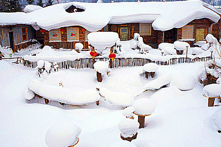 厦门到东北旅游【春节冰雪童话】哈尔滨冰雕展-雪乡-亚布力5日