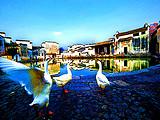 黄山旅游【10月酷玩黄山】黄山,宏村,醉温泉,老街纯玩三日