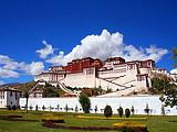 厦门到西藏旅游【4月尊享青藏】青海湖+西藏拉萨+林芝8日游