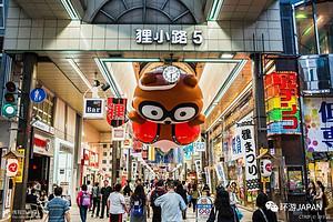 厦门到日本旅游【2-3月轻奢の旅】日本本州全景双飞七日游
