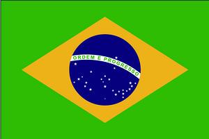 巴西签证_巴西旅游签证_巴西工作签证资料