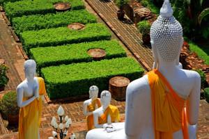 5-6月会员专享【泰尊贵】泰国高端品质双飞六日游 国旅电话