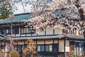 厦门到日本旅游【5月新经典之旅】大阪京都箱根富士山东京6日
