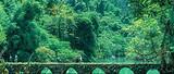 厦门到贵州旅游【3月初遇贵州】黄果树+荔波+苗寨+青岩五日游