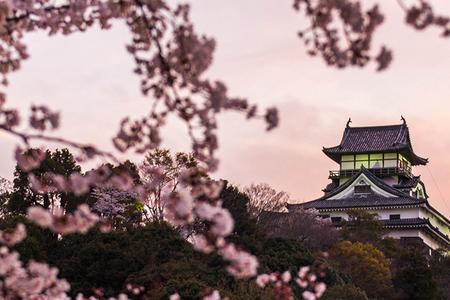 日本轻奢七日游【轻奢之旅】日本本州奢华半自助七日