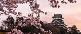 日本轻奢七日游【1月轻奢之旅】日本本州奢华半自助七日