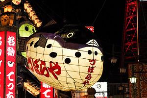 日本轻奢线路【10月轻奢之旅】日本本州全景双飞七日游
