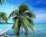 【12月】国旅厦门到三亚槟榔谷+天涯海角+南山双飞5日游