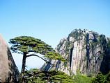 【5月】厦门到黄山+西递+石林+醉温泉双高五日游-厦门国旅