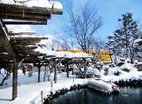【寒假】厦门到日本北海道道东探秘纯白深度6日游_厦门旅行社