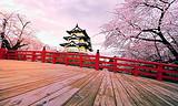 【3-4月】厦门日本大阪京都箱根富士山东京6日游_厦门国旅