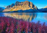【5-6月】厦门到加拿大东西岸及落基山脉国家公园13天之旅_