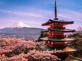 【3-4月】厦门到日本东京富士山京都奈良大阪6日游_厦门国旅