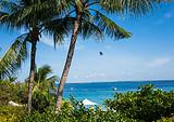 【暑假】厦门到菲律宾宿务+薄荷岛浪漫六日游-厦门国旅