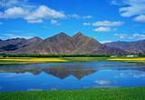 【暑假】厦门到兰州-祁连-青海湖-茶卡-可可西里双飞8日游