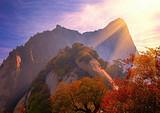 【4-5月】厦门国旅到陕西西安延安壶口华山法门寺双飞七日游