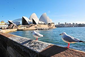 厦门到澳洲新西兰凯恩斯墨尔本大洋路13日游_厦门国旅