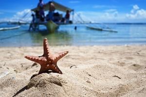 【12月】厦门到菲律宾宿务+薄荷岛浪漫6日游_厦门国旅