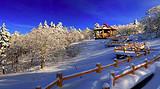 【春节】哈尔滨|亚布力滑雪|雪乡|冰雪画廊|梦幻家园5日游