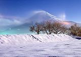 【寒假】厦门到哈尔滨|亚布力|大雪谷|雪乡双飞5天_厦门国旅