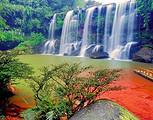 【4月】厦门到重庆贵州赤水磁器口+洪崖洞双飞5日游_厦门国旅
