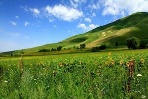 【7-8月】厦门国旅到新疆独库公路、赛里木湖双飞8日游