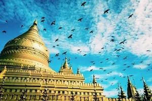 【暑假】厦门到缅甸仰光+内比都+蒲甘深度5日游_厦门国旅