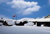 【11-1月】厦门到东北哈尔滨亚布力雪乡一价全含5天厦门国旅