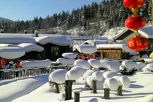 【1月】厦门到哈尔滨冰雪画廊+雪乡双飞5日游_厦门国旅