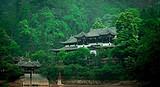 【暑假】厦门到成都黄龙溪+熊猫基地+鹤鸣茶社六日-厦门国旅