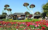 【10-12月】国旅厦门到瘦西湖+杭州宋城+苏州双飞5日游