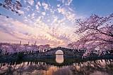 【五一】厦门到扬州瘦西湖+无锡樱花+南京双飞3日游_厦门国旅