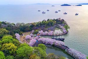 【4-5月】国旅厦门到上海+乌镇西栅+南京+苏州双飞5日游