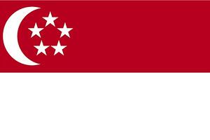 新加坡個人旅游簽證