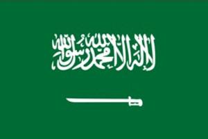 沙特阿拉伯 商務簽證(包簽證)