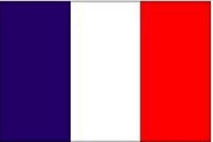 法国商务签证